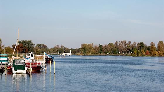 Wasserqualität der Brandenburger und Berliner Seen